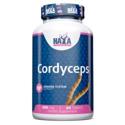 Cordyceps 500 mg - 60 Tabs