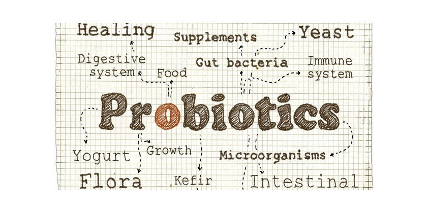 7 Reasons to Take Prebiotics - Part 2